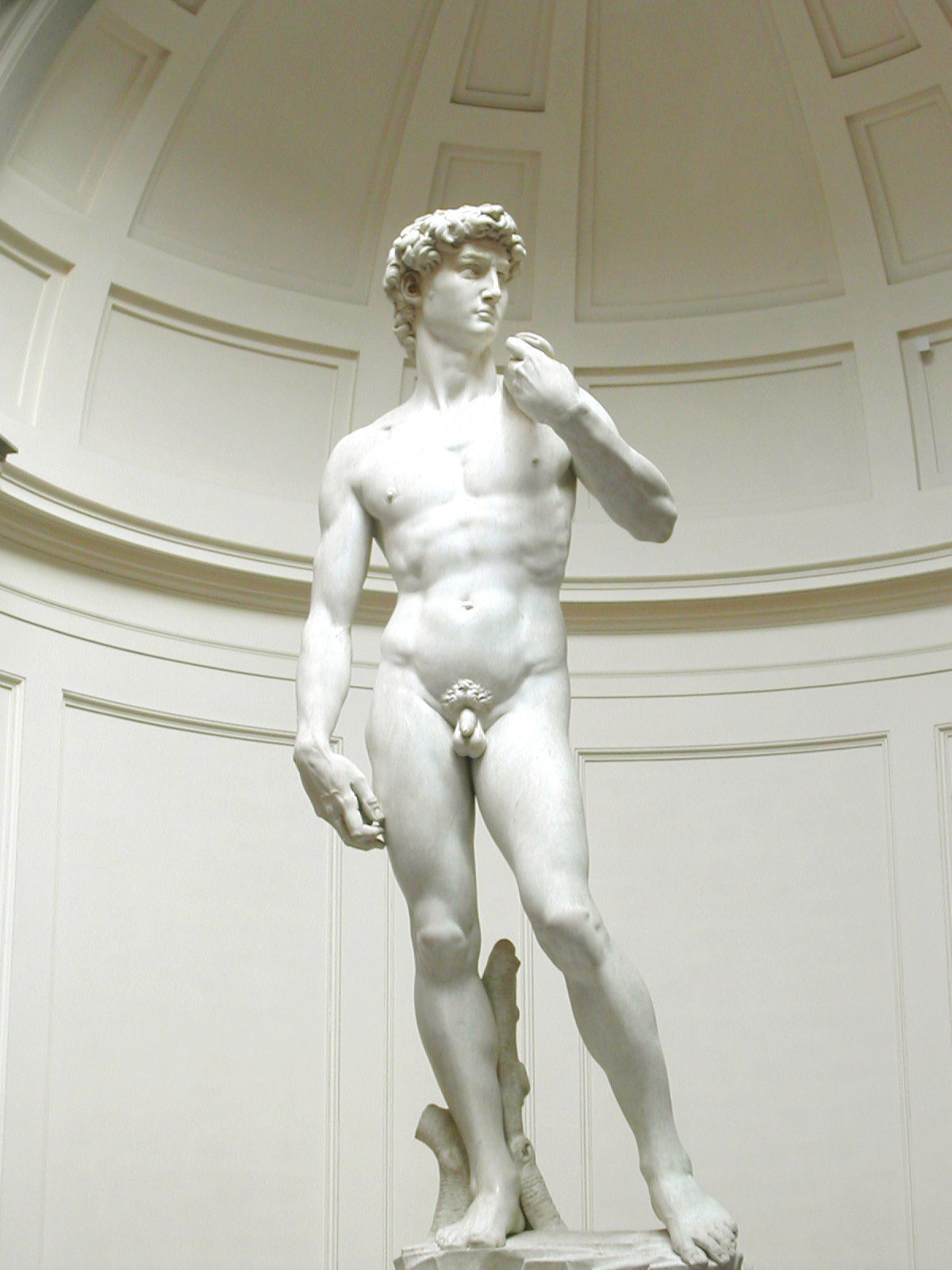 Seems michelangelo s david pity
