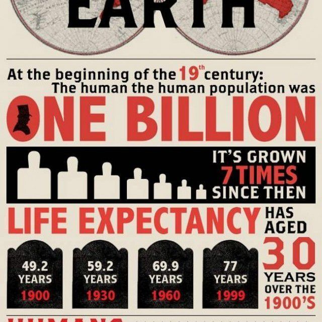 A catastrophist infographic inspired by Malthus theory