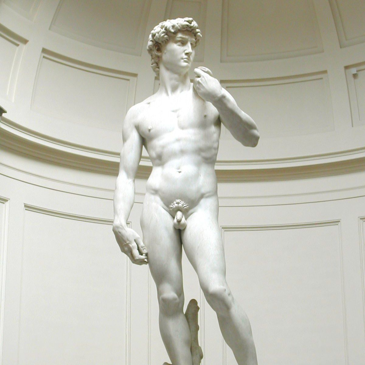The Michelangelo's David in the Accademia Gallery