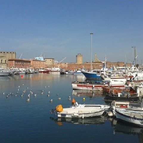 the port of livorno