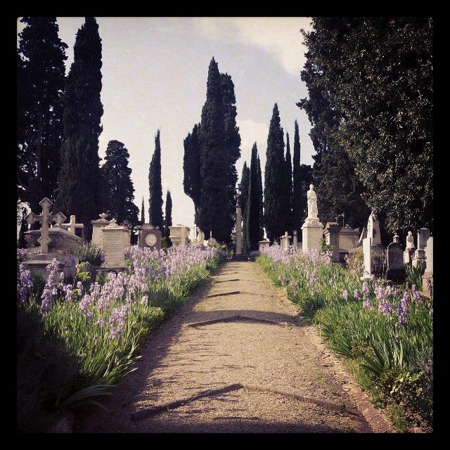 Cimitero degli Inglesi, Firenze by Alex