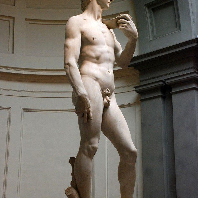 Michelangelo's David left viewin Galleria dell'Accademia in Florence